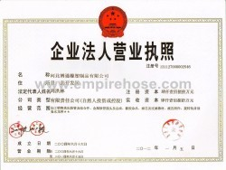 Business License for Corporate Entity